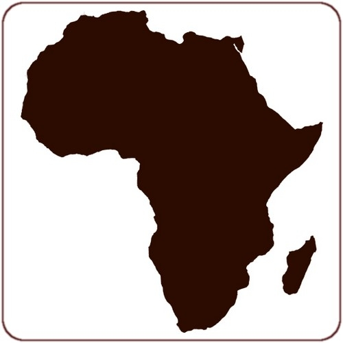 L'Afrique Innovante